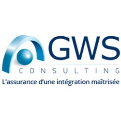 GWS Consulting
